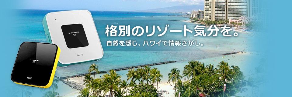 格別のリゾート気分を。   自然を感じ、ハワイで情報さがし。